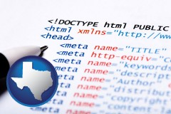 texas web site HTML code